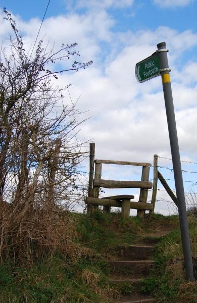 To Beechen Wood