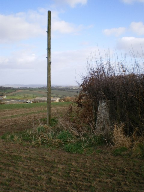 Trig point on The Down