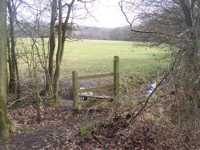 Stile and footbridge on Greensand Way