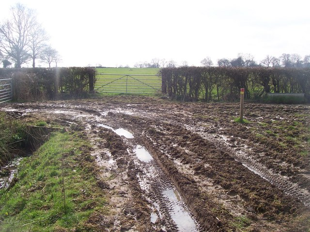 Bridleway meets footpath in Hazeldene Farm
