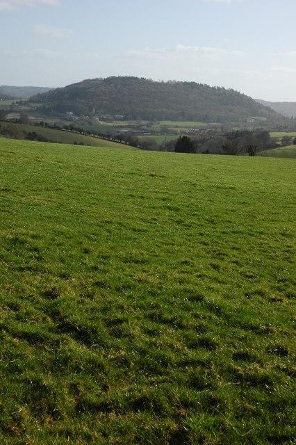 Doward viewed from Llangrove