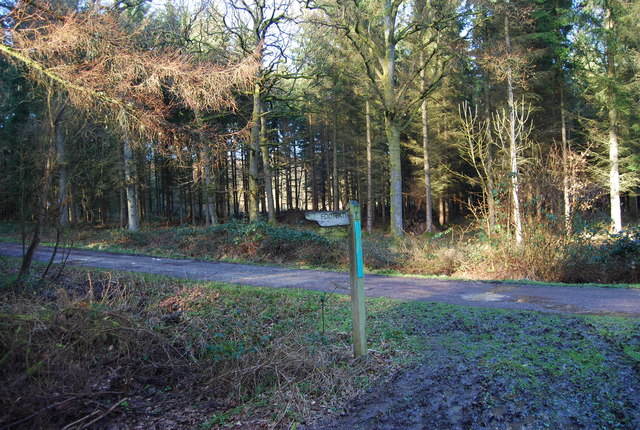 Signpost for the Hangers Way, Hartley Wood