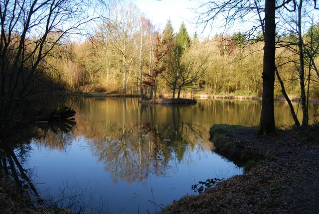 Pond, Hartley Wood