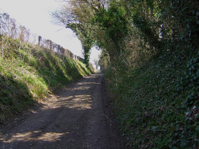 View up Lower Lamborough Lane, Cheriton