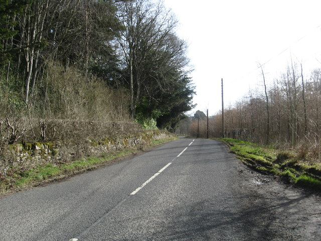The  road running east past Philiphaugh