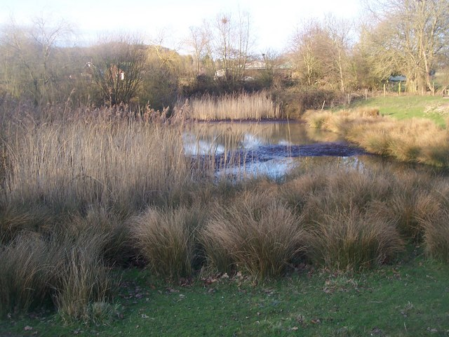 Pond in Judge House Farm