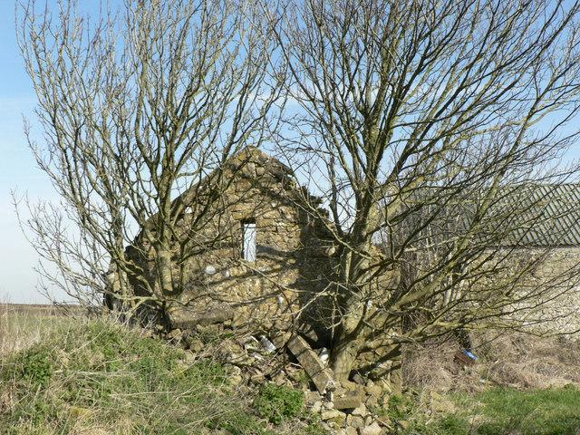Old barn wall.