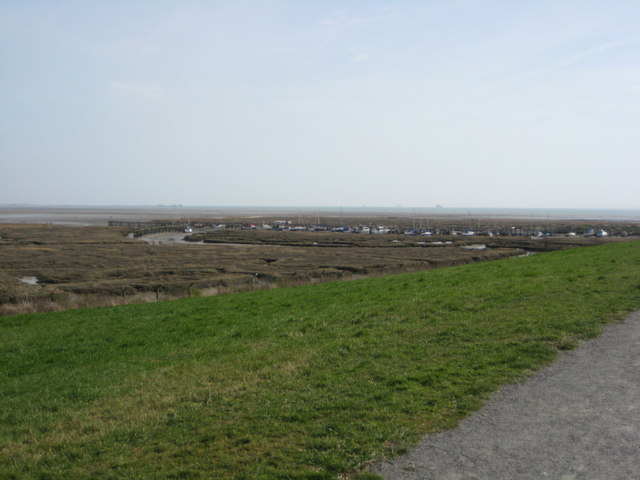 Salt marsh at Canvey Point