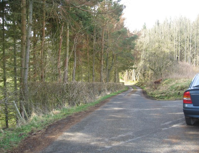 Road to Sundhope Farm