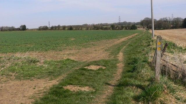 Footpath junction in large field near Easebourne