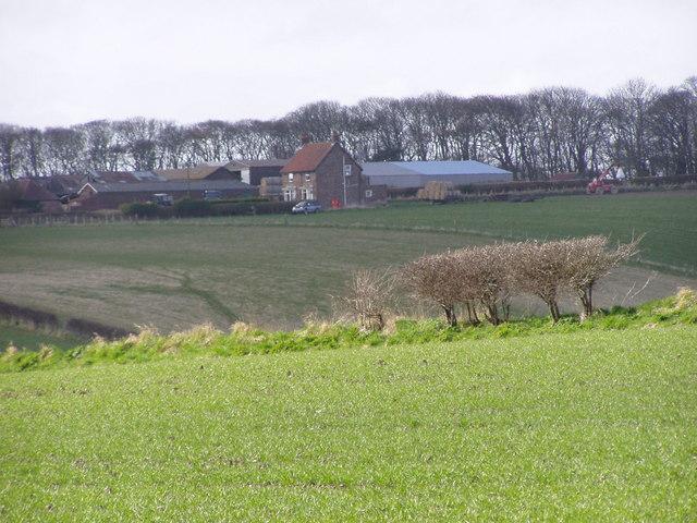 Farmland Near The Grange