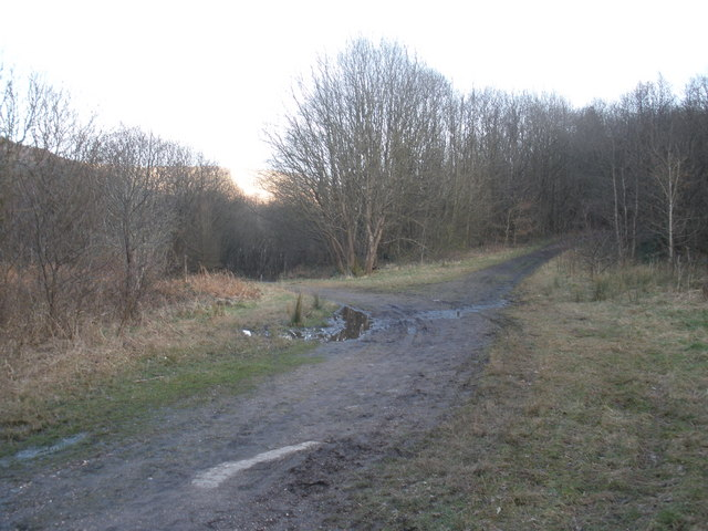 Path junction, near Treherbert