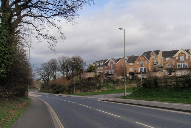 Houses on Hamilton Drive, Newton Abbot