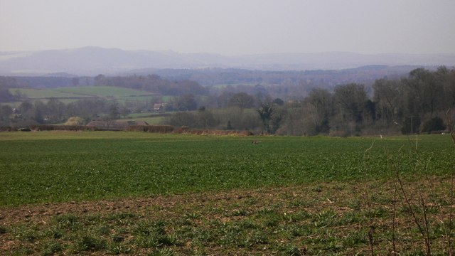 Large field south of Wick Lane, Easebourne