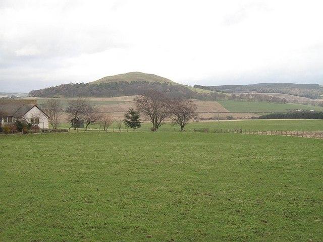 Pasture, Thankerton