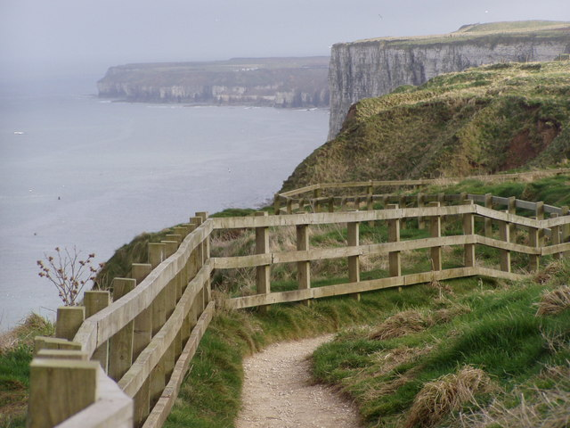 Clifftop Walk, Bempton Cliffs