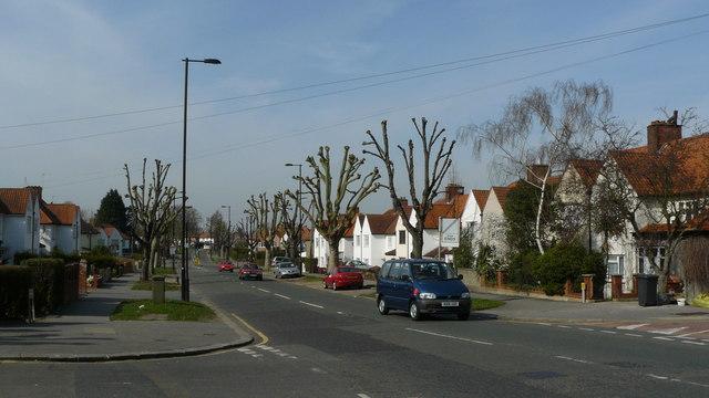 Street Scene, Denning Avenue