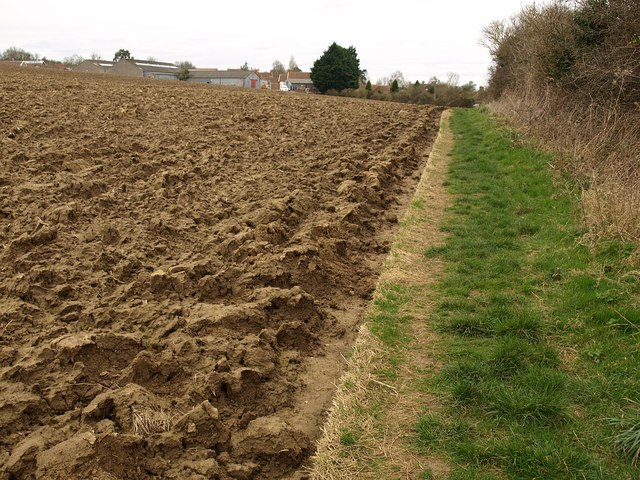 Field, Bower Hinton