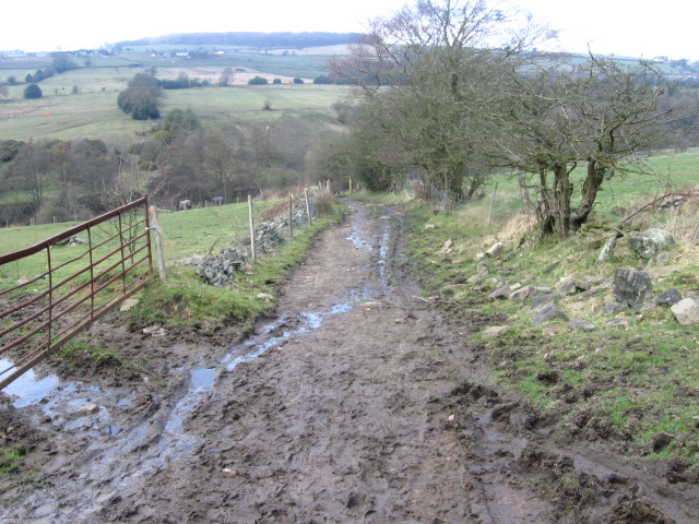 Footpath from Thornsett