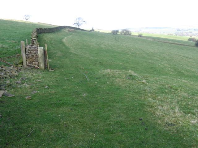 Footpath near Briargrove Farm