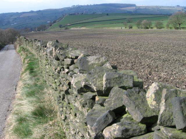 Towards Highwalls Farm