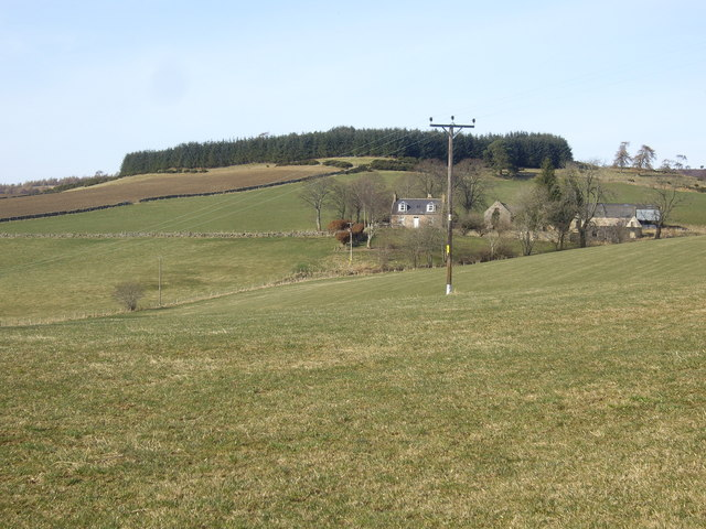 View towards a hilltop copse