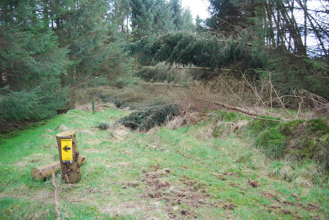 Diversion sign on forestry path