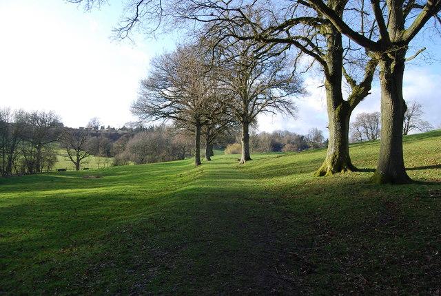 The Hangers Way near King John's Hill