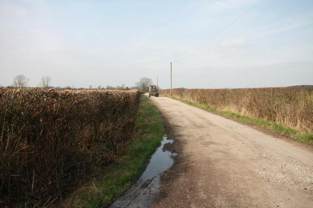 Lane to Bank Farm