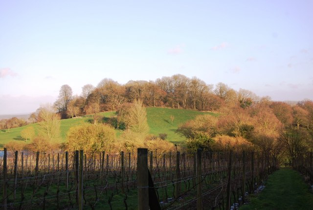 King John's Hill