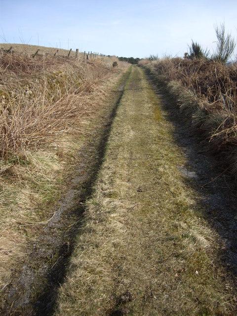 Track from Denhead towards Balnacraig