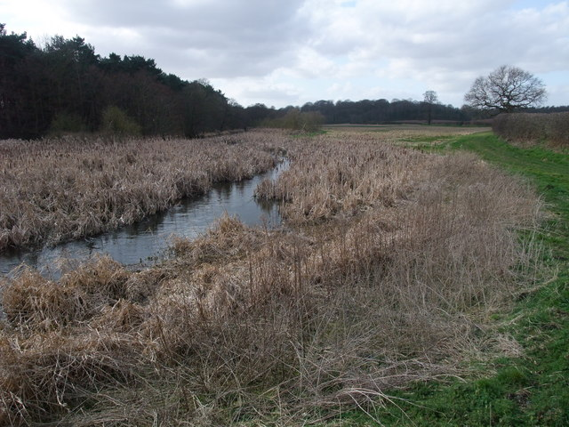 River Poulter next to Bracken Hill Wood