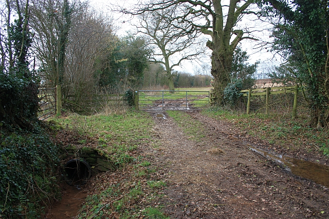 Bridleway to Criftage