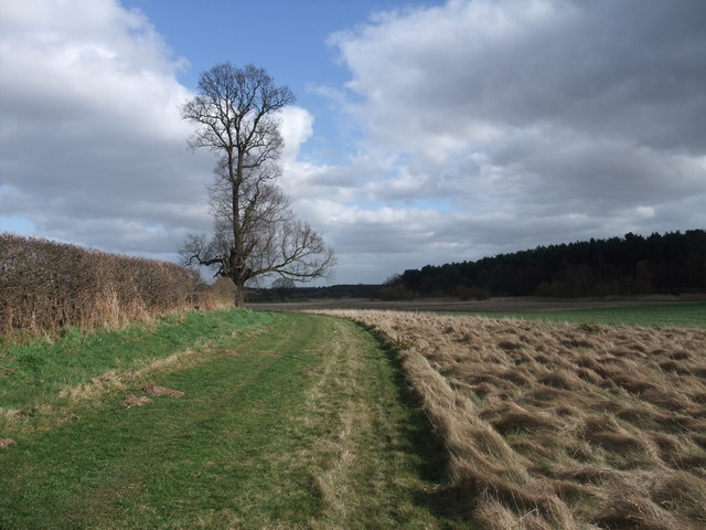 Bridleway from the A614 to Crook Ford
