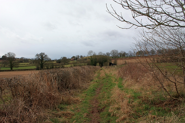 Bridleway from Hundred Bank