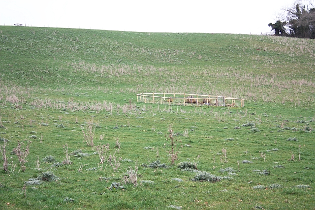 Enclosure on Hundred Bank