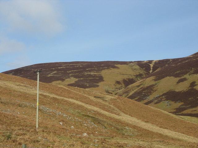Hillside grazing on Clockmore