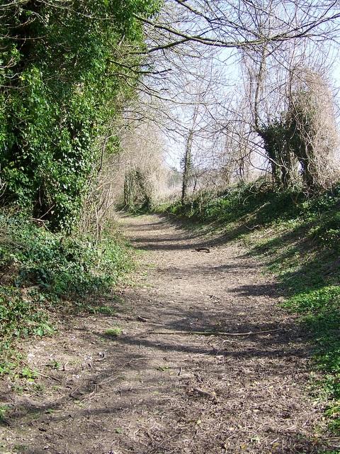 Bowling Green Lane, Pentridge
