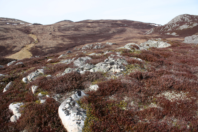 Rocky moorland on Creag na h-Iolaire