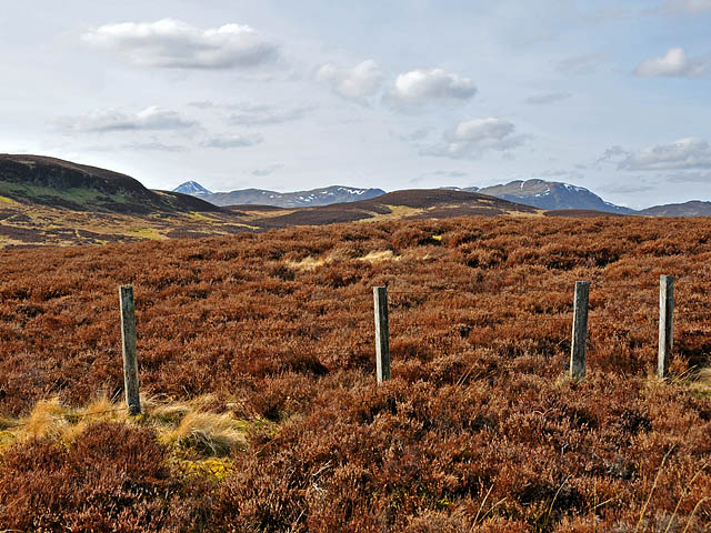 Moorland and fence
