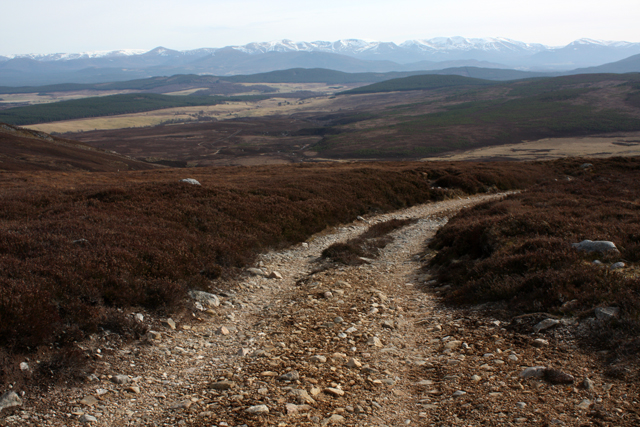 Track on Creag na h-Iolaire