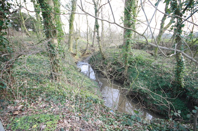Small Stream at Holme Nook