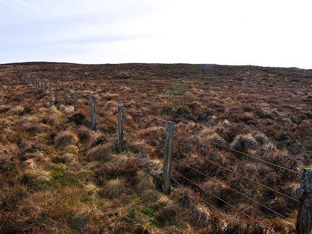 Fence and moorland