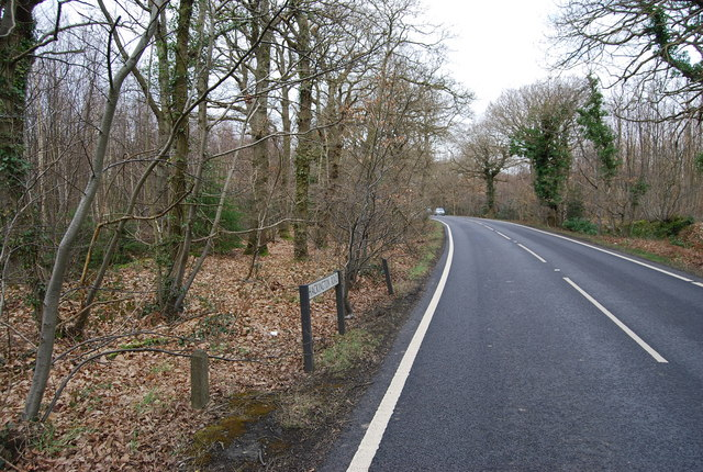 Clowes Wood, Hackington Rd