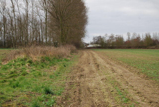 Bridleway leading SW towards Well Court
