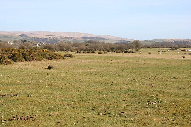 Roborough Down near Yelverton