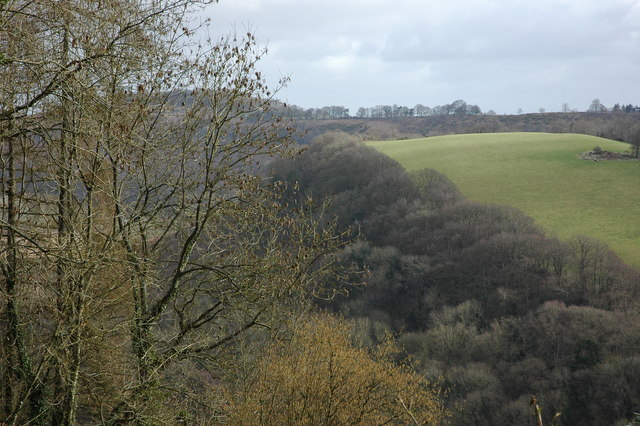 Huntsman Hill and Coppet Hill