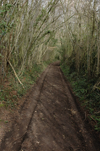 Track and Bridleway, Great Doward