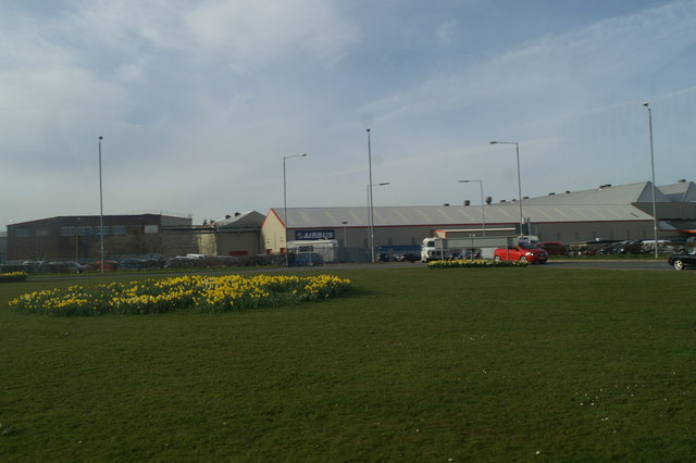 Daffs in bloom at the Airbus roundabout