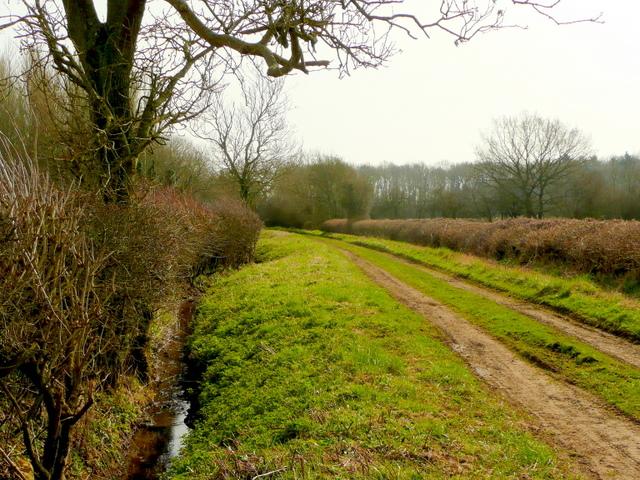 Green Lane south of Poulton
